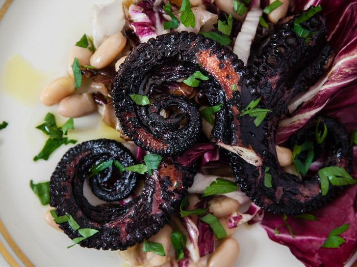 Grilled Octopus with White Beans and Radicchio